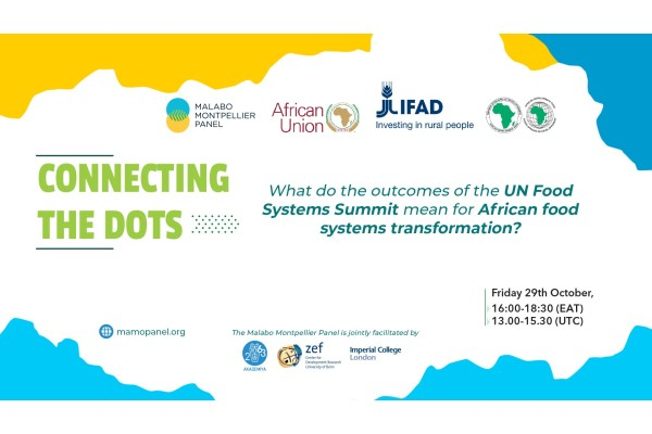 Post-UNFSS High-Level Policy Conversation: What do the outcomes of the United Nations Food Systems Summit Mean for African Food Systems Transformation