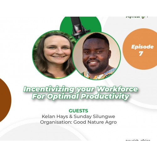 Incentivizing your Workforce for Optimal Productivity