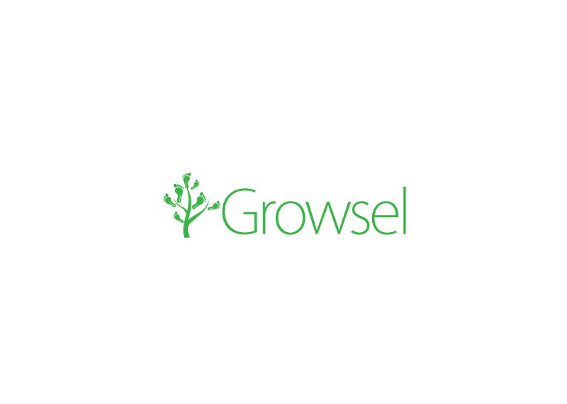 Digital Crowdfunding Platform